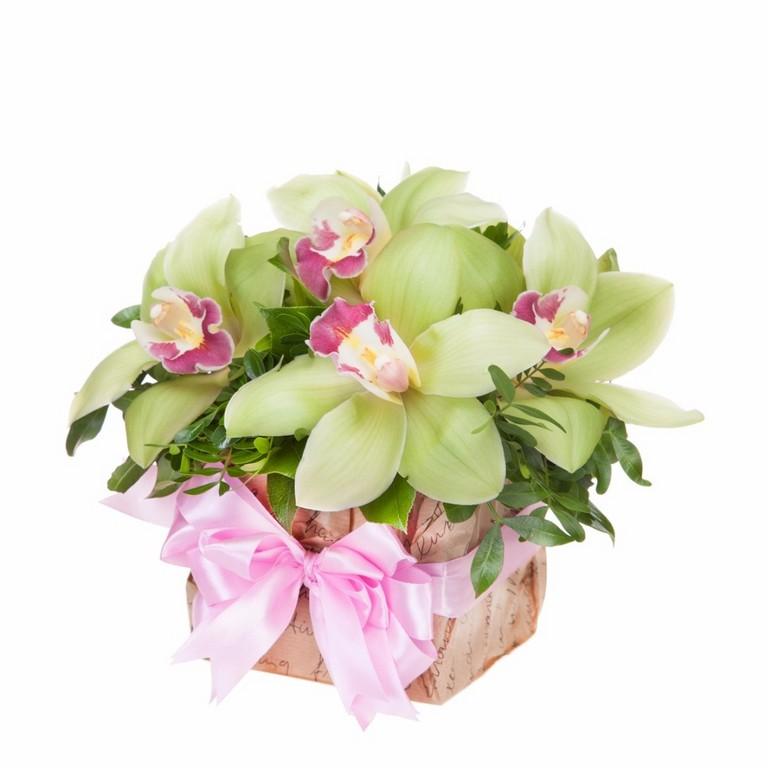 Букеты из мини орхидей